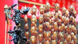 insectos-nutricionista--644x362