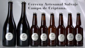 cervezas artesanales  (3)